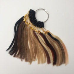Hair Extensions Shade Wheel